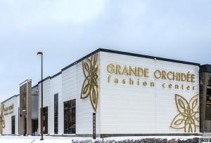 grande_orhidee_big